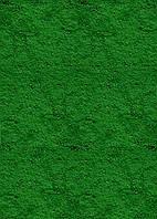 Краситель (пигмент) Зелёный для бетона, штукатурки 750 гр