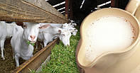 Домашнее козье молоко (1л)