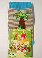 Носки для маленьких в бежевую полоску с пальмой, фото 1