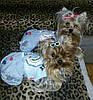 """Комбинезон, костюм джинсовый с футболкой """"Деним"""" для собаки. Одежда для собаки, фото 7"""