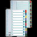 Картонные разделители Mylar  A4 Esselte, белый 1-31, фото 3