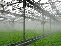 Системы туманообразования теплиц