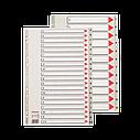 Разделители пластиковые из ПП, цифровые A4 Esselte, 1-31 maxi, фото 2