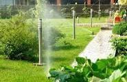 Благоустройство и озеленения участка