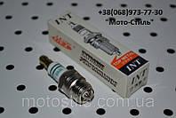 """Свеча зажигания """"INT"""" F-BM6 (под конус) для бензокос и бензопил, фото 1"""
