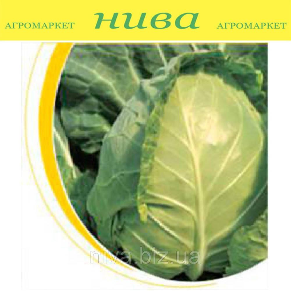 Магнус F1 насіння капусти б/к ранньої калібр. Hazera 2 500 насінин