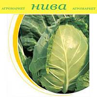 Магнус F1 семена капусты белокачанной ранней калибр. Hazera 2 500 семян