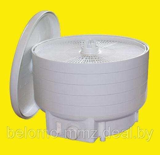 Электросушилка БелОМО для фруктов, овощей, грибов