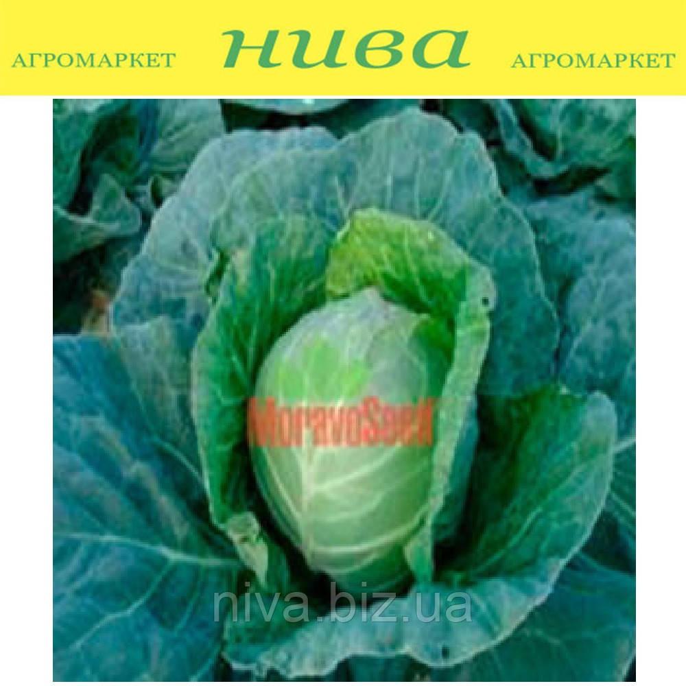 Діта насіння капусти б/к ранньої Moravoseed 1 000 г