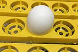 Инкубатор для яиц HHD 96 автомат (на 96 яиц), фото 7