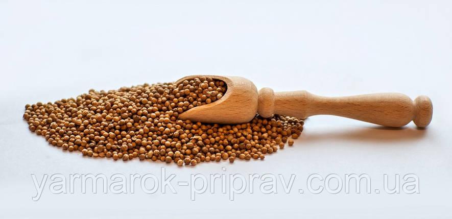 Кориандр зерно, фото 2