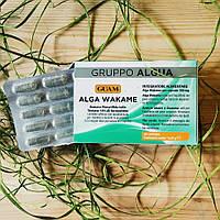 Пищевая добавка для специального диетического потребления GUAM водоросль Вакамэ
