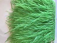 Перьевая тесьма из перьев страуса .Цвет Mint.Цена за 0,5м