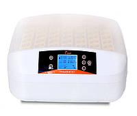 Инкубатор для яиц HHD 56 автомат (на 56 яиц), фото 1