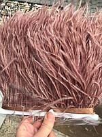 Перьевая тесьма из перьев страуса .Цвет Chocolate.Цена за 0,5м