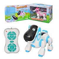 """Детская интерактивная радиоуправляемая игрушка Baby Tilly """"Космопес""""  (2099)"""