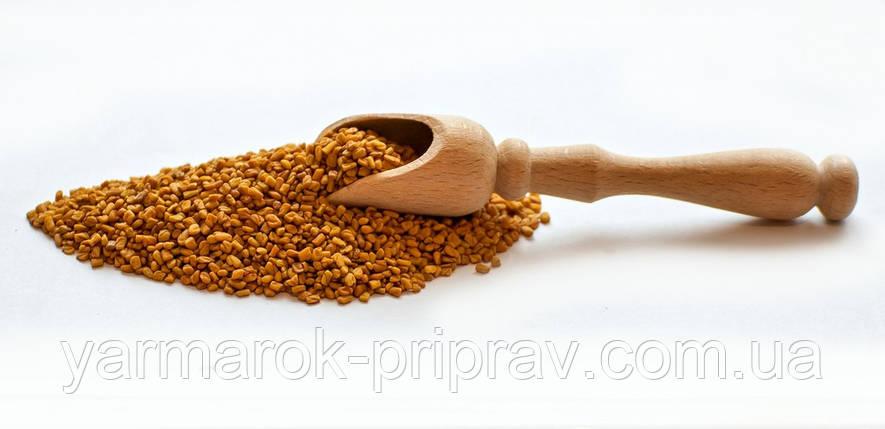 Пажитник (шамбала, фенугрек, чаман) насіння, фото 2