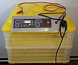 Инкубатор для яиц HHD 96 автомат (на 96 яиц), фото 3