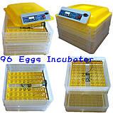 Инкубатор для яиц HHD 96 автомат (на 96 яиц), фото 4