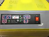 Инкубатор для яиц HHD 96 автомат (на 96 яиц), фото 6