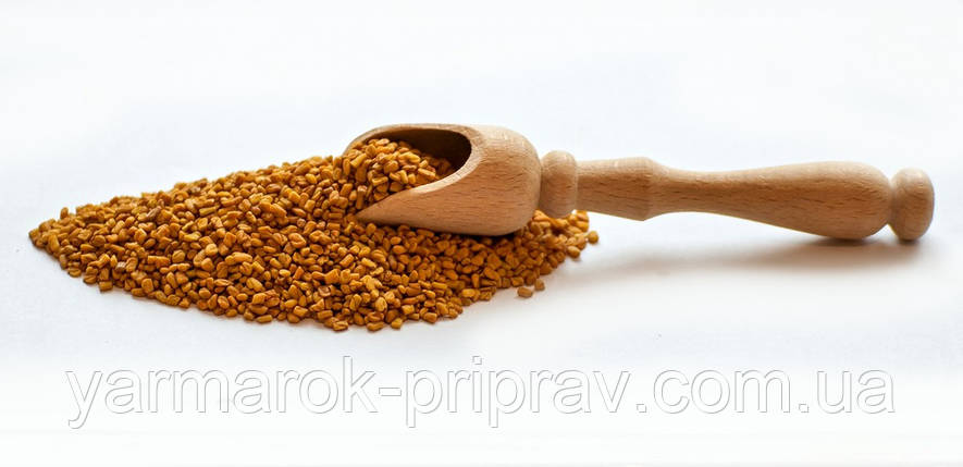 Пажитник зерно (шамбала, фенугрек, чаман), 10г, фото 2