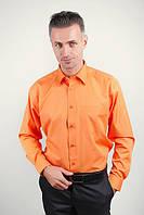 Рубашка яркая оранжевая Fra №818-69 (Апельсиновый)