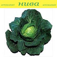 Супрім Вантаж F1 насіння капусти б/к середньоранньої Sakata 1 000 насінин