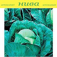 Атрия F1 (Atria F1) семена капусты средней Seminis 2 500 семян