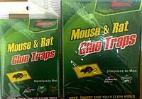 Клеевая ловушка для мышей малая 12*15