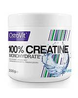 OstrovitCreatine monohydrate 300 g
