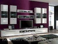 Комплект для гостиной Jang Gerbor / Янгус модульная система, стенка в гостиную)