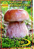 Белый гриб 10 г