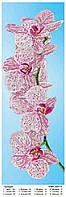 """Купить оптом схемы (заготовки) для вышивки бисером картин на АТЛАСЕ """"Орхидеи"""""""
