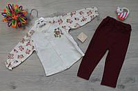 Трикотажный костюм для девочки два предмета тм Flexi Турция р. 6 м, 9 м, 12м