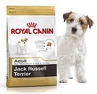 Royal Canin Jack Russell Terrier Adult корм для собак породы джек-рассел-терьер Основное питание, Для взрослых животных, Собаки, Супер-премиум, 7.5 кг