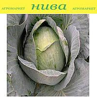 Кентавр F1 cемена капусты белокачанной поздней Lucky Seed 1 000 семян