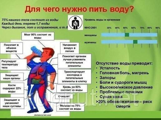 Нормомасс как принимать , Нормомасс отзывы, Нормомасс купить Киев