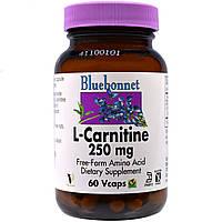 Bluebonnet Nutrition, L-карнитин, 250 мг, 60 вегетарианских капсул