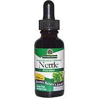 Nature's Answer, Крапива двудомная (Urtica Dioica), 2000 мг, 1 жидкая унция (30 мл), купить, цена, отзывы