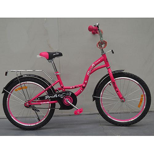 Двухколесный велосипед PROFI 14 дюймов G1423 Princess малиновый