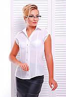 Рубашка на пуговицах полуприлегающего силуэта(2 расцветки )