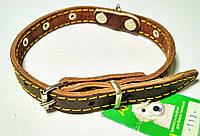 Ошейник кожаный  15 мм украшений