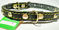 Ошейник кожаный  15 мм украшенный