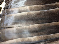 Шкурки норки,Данія, Brown (коричнева) самець 75-78см