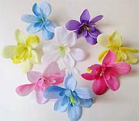 Орхидеи, лилии, каллы
