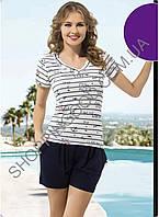 Костюм для дома и отдыха футболка и шорты Shirly 1106