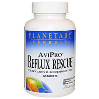 Planetary Herbals, AviPro защита от несварения, 60 таблеток, купить, цена, отзывы