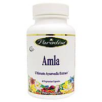 Paradise Herbs, Амла, 60 вегетарианских капсул, купить, цена, отзывы