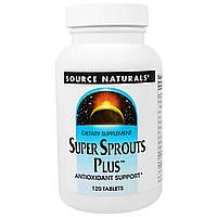 """Source Naturals, """"Супер-ростки плюс"""", пищевая добавка для поддержания уровня антиоксидантов, 120 таблеток, купить, цена, отзывы"""