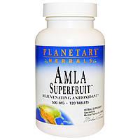 Planetary Herbals, Суперфрукт амла, омолаживающий антиоксидант, 500 мг, 120 таблеток, купить, цена, отзывы